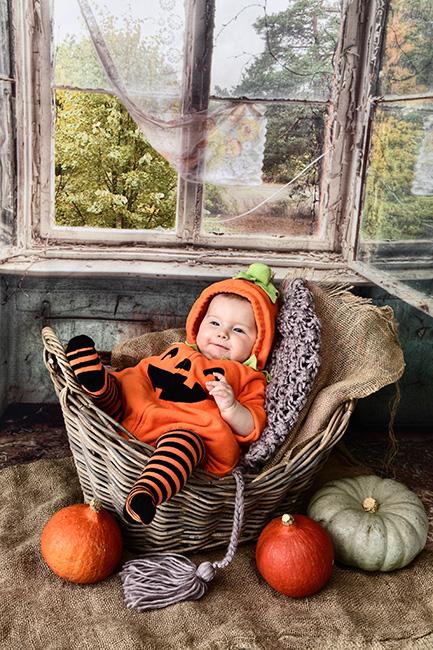 Baby-Fotoshooting im Fotostudio